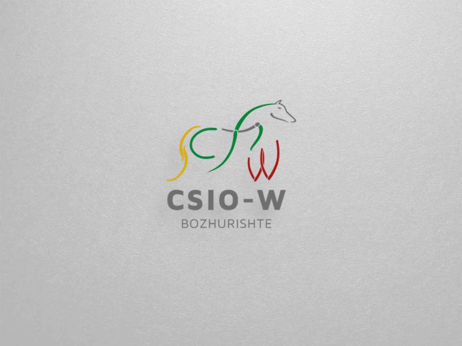 CSIO1-изработка-на-уебсайт-linkbox